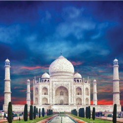 Taj with Wildlife Special Tour Package 13N/14D