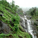 Best Of South India Hill Stations 7N/8D