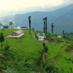 Graceful Ooty Coorg Hills With Wayanad  6N/7D