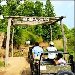 Tropical  in Bandhavgarh 9N/10D ( 4N Delhi  5N  Bandhavgarh National park )