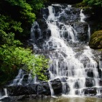 Memorable Guwahati-Shillong-Cherrapunji-Nameri & Kaziranga Tour 10N/11D