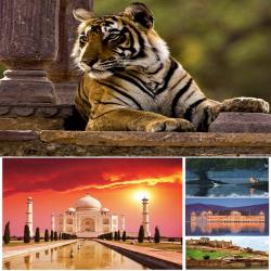 North Bengal & Dooars