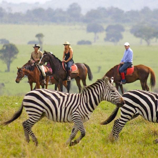 Quixotic Kenya 5N/6D