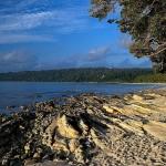 Delightful Andaman 3N/4D
