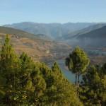 Awesome Bhutan 8N/9D
