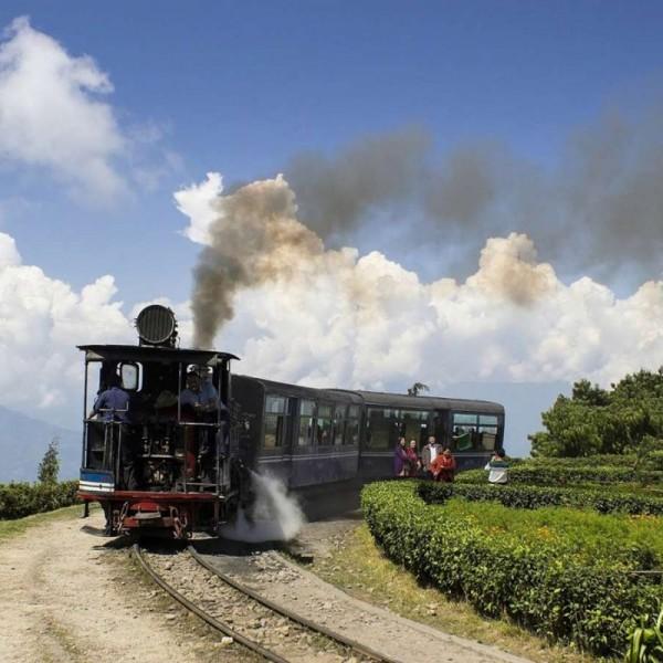 Captivating Kerala 7N / 8D ( 1N Cochin, 2N Munnar , 1N Alleppey, 1N Thekkady, 2N Kovala )