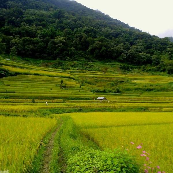 Religious Hornbill Festival Tour Nagaland 5N/6D