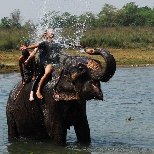 Adventurous Chitwan National Park 2N/3D