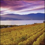 LAKES, ORCHARDS & WINERY 9N/10D