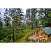Uttrakhand Tour Package (18)