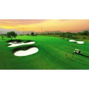 Golf Tour Packages (12)