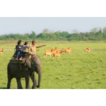 Multi Sport Activity Trip Rajaji National Park 2N/3D