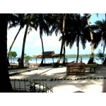 Marari Beach Resort - Mararikulam Tour 4N/5D