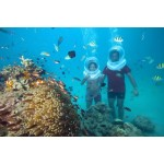 PORT BLAIR WITH HAVELOCK BEACHES 4N/5D