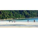 PORT BLAIR, HAVELOCK WITH NEIL ISLAND 5N/6D