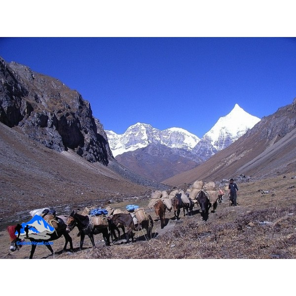 Druk Path Trek 10N/11D
