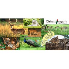 Delightful Chhatisgarh 4N/5D