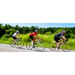 Cycling Tour in Mysore and Srirangapatnam