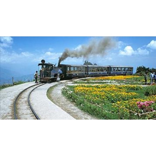 Complete Tour To Sikkim With Darjeeling 10N/11D