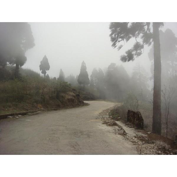 Darjeeling Gangtok Tour 4N/5D