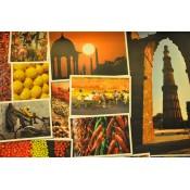 Delhi To New Delhi (21)