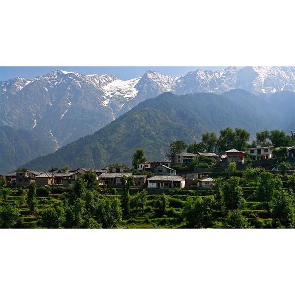 Best of Himachal Tour 10N/11D