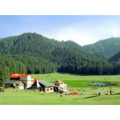 Himachal Tour Packages (23)