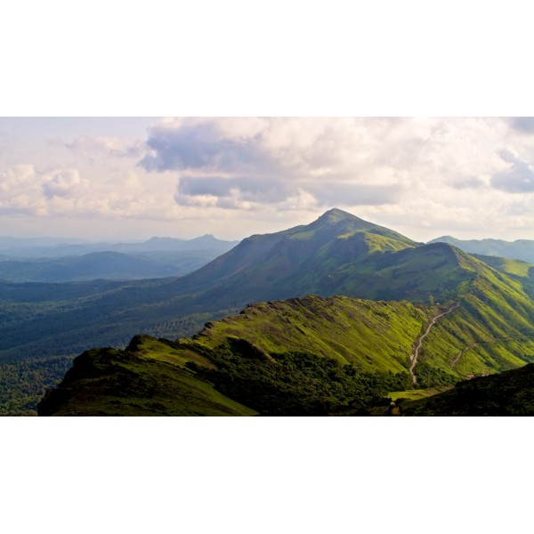 Trek to Mullayanagiri 1N/2D