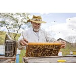Beekeeping And Honey Tour In Coorg
