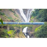 Dudhsagar Falls and Spice Plantation 1D