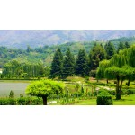 Kashmir Houseboat Tour With Sonmarg And Pahalgam 4N/5D