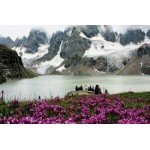 Kashmir Houseboat Package With Sonmarg 3N/4D