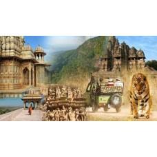 Dazzling  Madhya Pradesh 6N/7D