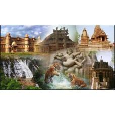 Fabulous Madhya Pradesh 13N/14D