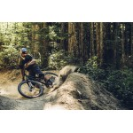 Mountain Biking in Himachal 15N/16D