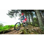 Mountain Biking in Garhwal 13N/14D