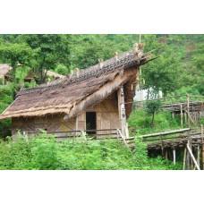 Cultural of Nagaland 6N/7D