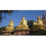Holy Lumbini Day Trip