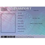 Passport For Minors