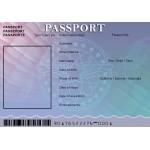 Passport For Minors
