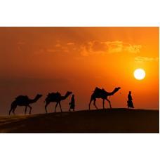 Memorable Jaipur 3N/4D