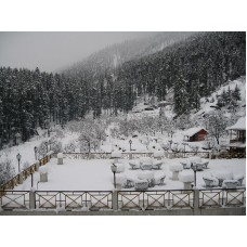 Manali Snow experience 3N/4D