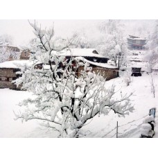 Manali Snow experience 2N/3D
