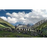 Amazing Road Trips : Manali - Leh - Srinagar for Women 10N/11D