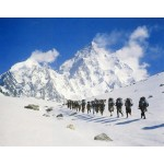 Lodge Based Chopta Trek 3N/4D