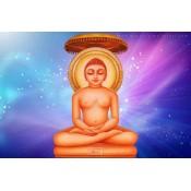 Jain Tours (10)