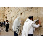 Jewish Tours (5)