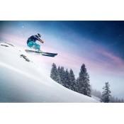Skiing  (11)