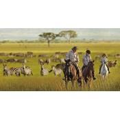 Horse Safari (1)