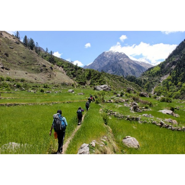 Chopta Chandrashila Trek 4N/5D